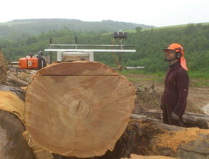 Chainsaw milling services