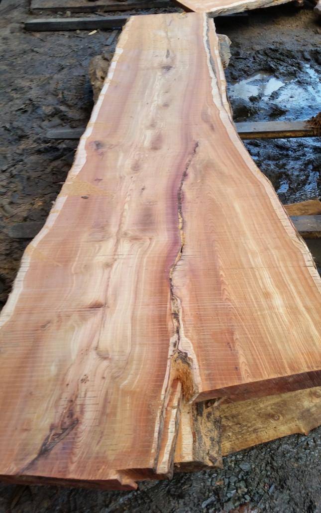 English Hardwood Supplies In Cornwall