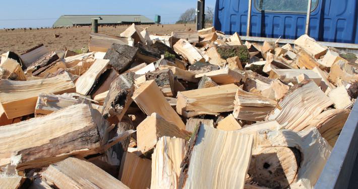 Hardwood Logs Cornwall