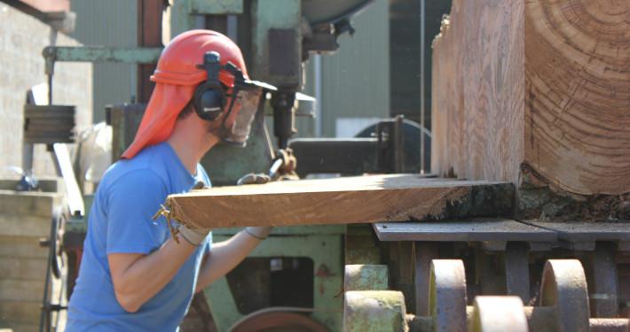 Hardwood Sawmill